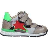 Zapatos Niños Deportivas Moda Falcotto 2015450 01 Gris