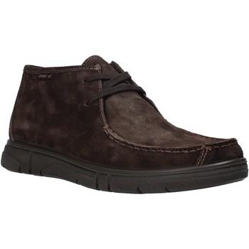 Zapatos Hombre Botas de caña baja Enval 6220822 Marrón