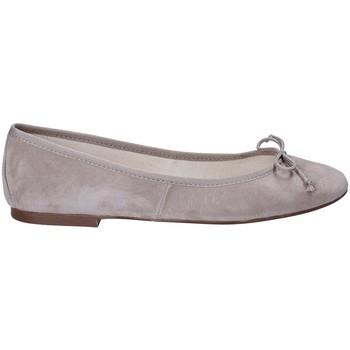 Zapatos Mujer Bailarinas-manoletinas Ska 181 CARLOTTA ATP Gris