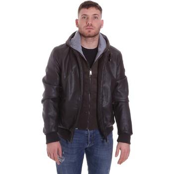 textil Hombre cazadoras Roberto Cavalli FST407 Marrón