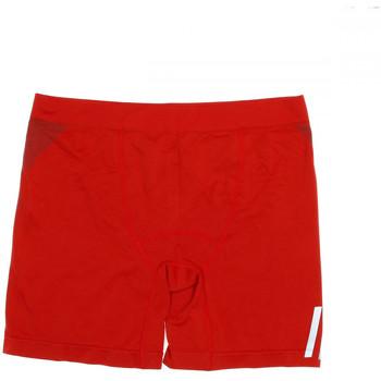 textil Niño Shorts / Bermudas Hungaria  Rojo