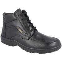 Zapatos Hombre Botas de caña baja Luisetti 20408ST NEGRO