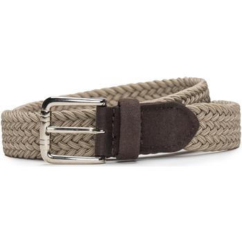 Accesorios textil Mujer Cinturones Nae Vegan Shoes BeltVila_Camel Beige