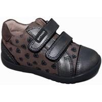 Zapatos Niña Zapatillas bajas Garvalin 5554 Gris