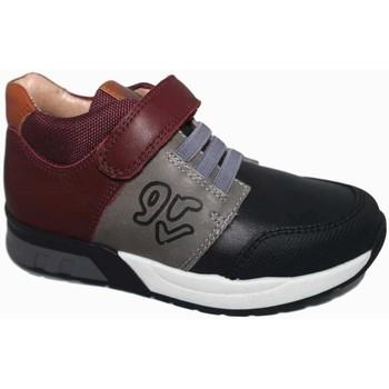 Zapatos Niño Zapatillas bajas Garvalin 5295 Gris