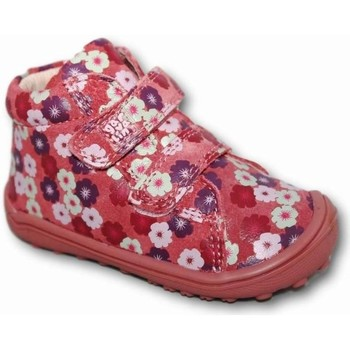 Zapatos Niña Botas de caña baja Garvalin 3631 Multicolor