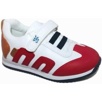 Zapatos Niño Zapatillas bajas Garvalin 5561 Marrón