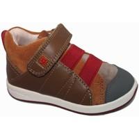Zapatos Niño Zapatillas altas Garvalin 5505 Marrón