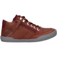 Zapatos Niño Derbie & Richelieu Kickers 830100 JOULA Marr?n