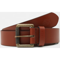 Accesorios textil Hombre Cinturones Dickies South shore leather belt Marrón