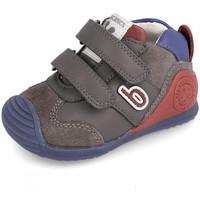 Zapatos Niños Botas de caña baja Biomecanics 191166 Gris