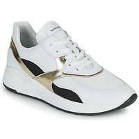 Zapatos Mujer Zapatillas bajas NeroGiardini FILOMENE Blanco / Negro / Oro