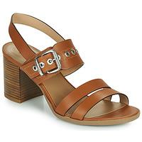 Zapatos Mujer Sandalias NeroGiardini GHILLO Cognac
