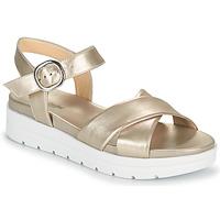 Zapatos Mujer Sandalias NeroGiardini LONELESS Oro