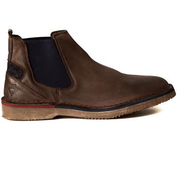 Zapatos Hombre Botas Chilli BOTIN CHELSEA Marrón