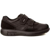 Zapatos Hombre Zapatillas bajas Imac DEPORTIVO VELCROS Negro