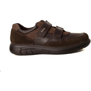 Zapatos Hombre Derbie & Richelieu Imac DEPORTIVO VELCROS Marrón