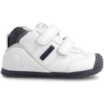 Zapatos Niños Zapatillas bajas Biomecanics BIOGATEO ZAPATILLAS NIÑOS Azul