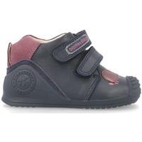 Zapatos Niños Zapatillas bajas Biomecanics PERRO BIOGATEO Azul