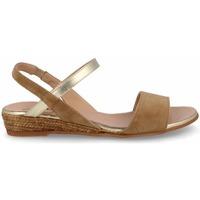Zapatos Mujer Sandalias Gaimo SANDALIA CUÑA BAJA PALA Marrón