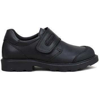Zapatos Niños Derbie & Richelieu Pablosky COLEGIAL VELCRO NEGRO Negro