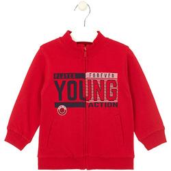 textil Niños Sudaderas Losan 025-6651AL Rojo