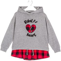 textil Niños Sudaderas Losan 024-6012AL Gris