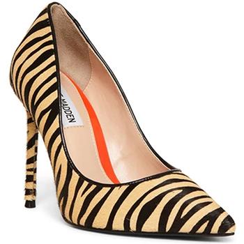 Zapatos Mujer Zapatos de tacón Steve Madden SMSVALAL-TIG Negro