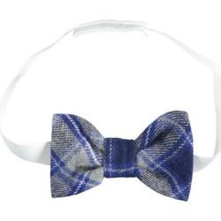 textil Niño Corbatas y accesorios Ido 4K112 Gris / azul