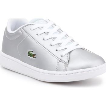 Zapatos Niños Zapatillas bajas Lacoste kids 7-34SPC0006334 plata