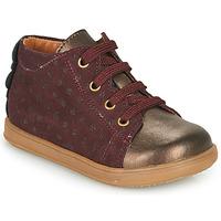 Zapatos Niña Zapatillas bajas Little Mary CLELIE Burdeo