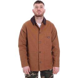 textil Hombre Parkas Dickies DK720346BD01 Marrón