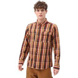 textil Hombre Camisas manga larga Dickies DK0A4X5LBD01 Marrón