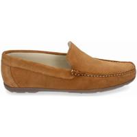 Zapatos Hombre Zapatos náuticos Myers 80737 (14.148) Marrón