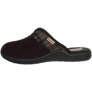 Zapatos Hombre Zuecos (Mules) Uomodue PANNO  SCOZZESE-64 Marrón