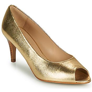 Zapatos Mujer Zapatos de tacón JB Martin PARMINA Argan