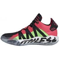 Zapatos Hombre Baloncesto adidas Originals  Negro