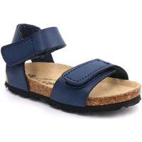 Zapatos Niño Sandalias Billowy 7036C14 Azul