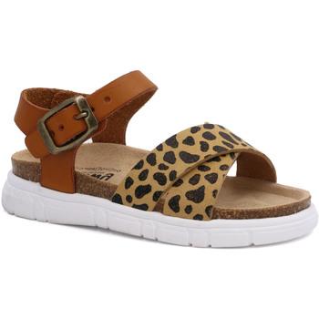 Zapatos Niña Sandalias Billowy 7040C10 Marrón
