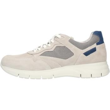 Zapatos Hombre Zapatillas bajas NeroGiardini E101966U Gris