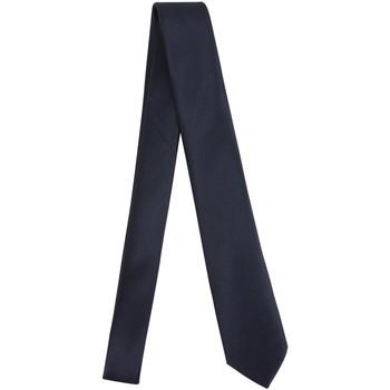 textil Hombre Corbatas y accesorios Manuel Ritz 3030K502-213352 Azul