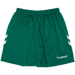textil Hombre Shorts / Bermudas Hummel  Verde