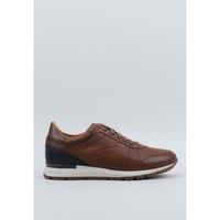 Zapatos Hombre Derbie Kangaroos  Marrón