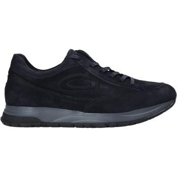 Zapatos Hombre Zapatillas bajas Alberto Guardiani AGM004800 Azul