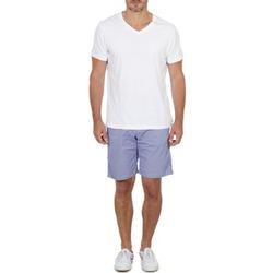 textil Hombre Shorts / Bermudas Franklin & Marshall GAWLER Azul / Beige