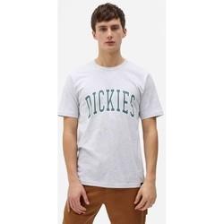 textil Hombre Camisetas manga corta Dickies T-shirt  Aitkin gris chiné/vert