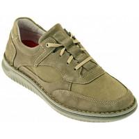 Zapatos Hombre Zapatillas altas Zen  Multicolor