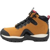 Zapatos Hombre Botas de caña baja DC Shoes Navigator Leather Lace Winter Marrón