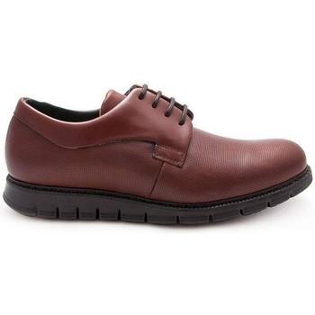 Zapatos Hombre Derbie Zerimar REIKIAVIK Marrón