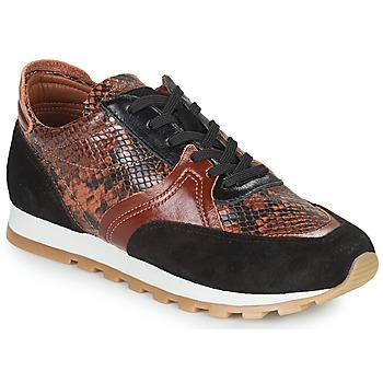 Zapatos Mujer Zapatillas bajas JB Martin GLOIRE Marrón
